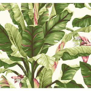 Banana Leaf Wallpaper AT7067