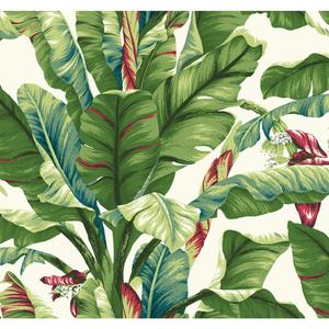 Banana Leaf Wallpaper AT7068