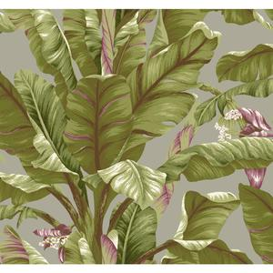 Banana Leaf Wallpaper AT7069