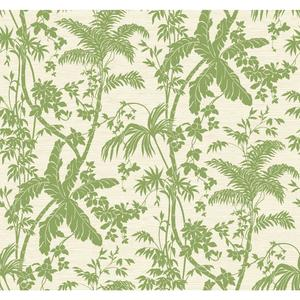 Palm Shadow Wallpaper AT7107