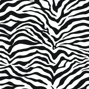 Zebra Wallpaper KD1798