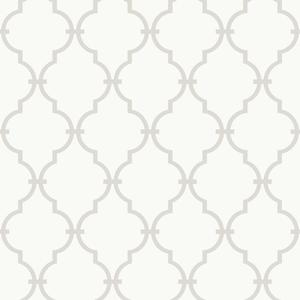 Modern Trellis Wallpaper YS9102
