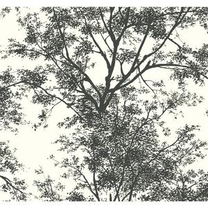 Circle Wallpaper YV9012