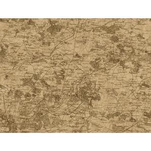 Vintage Map Wallpaper GX8173