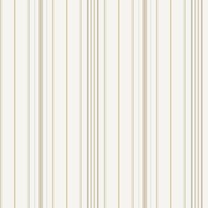 Wide Pinstripe Wallpaper PN0517