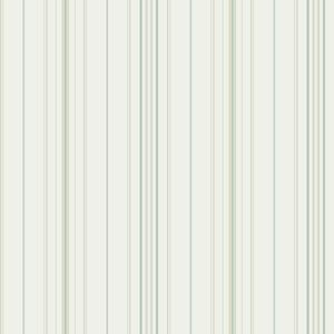 Wide Pinstripe Wallpaper PN0518