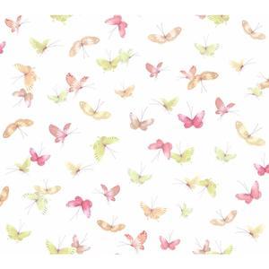 Butterflies Wallpaper WB5475