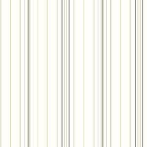 Wide Pinstripe Wallpaper AM8678