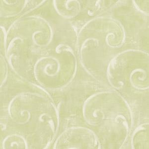 Textured Scroll Wallpaper AM8684