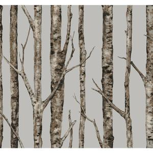 The Birches Wallpaper LL4757