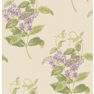 Madras Violet 100/12056
