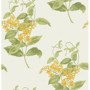 Madras Violet 100/12059