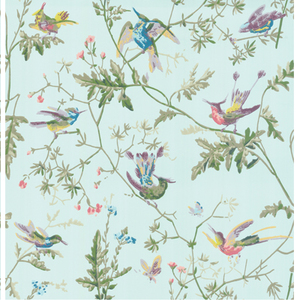 Hummingbirds 100/14069