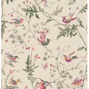 Hummingbirds 100/14071