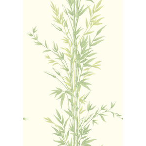 Bamboo 100/5023