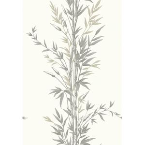 Bamboo 100/5025