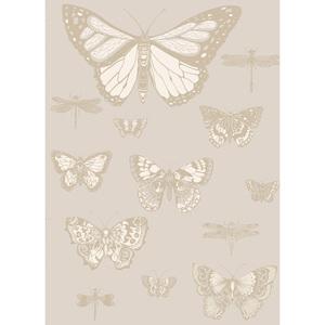 Butterflies & Dragonflies 103/15064