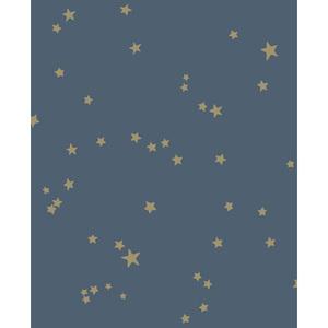 Stars 103/3017