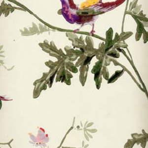 Hummingbirds 62/1002