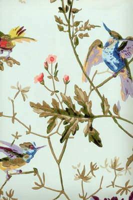 Hummingbirds 62/1004