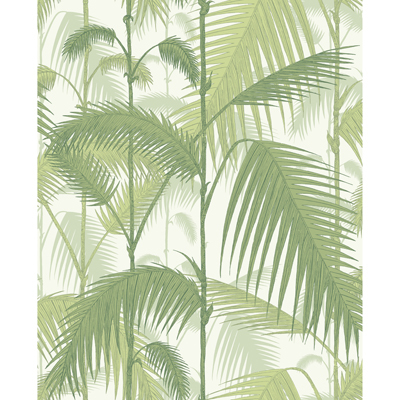 Palm Jungle 95/1001