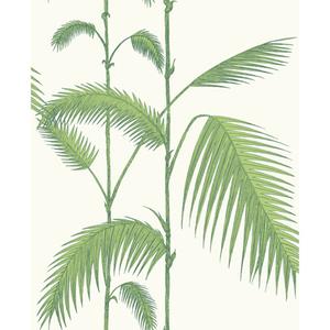 Palm 95/1009