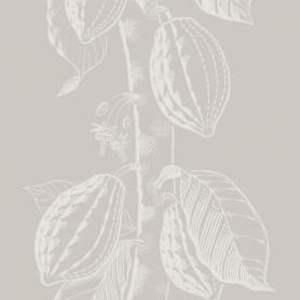 Cocoa 89/11044