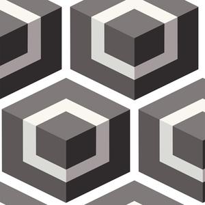 Hexagon 93/1002