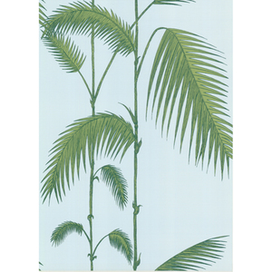 Palm Leaves 66/2010