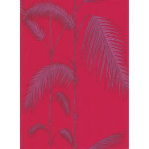 Palm Leaves 66/2015
