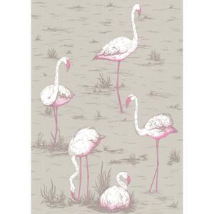 Flamingos 66/6042