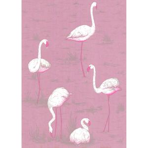Flamingos 66/6043