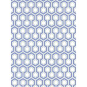 Hicks' Hexagon 66/8054