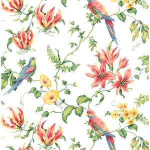 Tropical Floral Wallpaper CJ2801