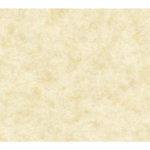 Painterly Texture Wallpaper HP0319