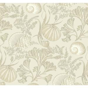 Coral Shells Wallpaper NY4871