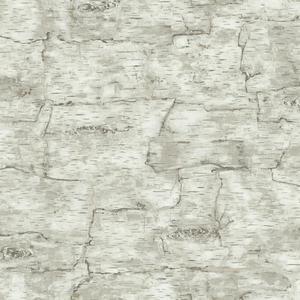 Birch Bark Wallpaper LM7987