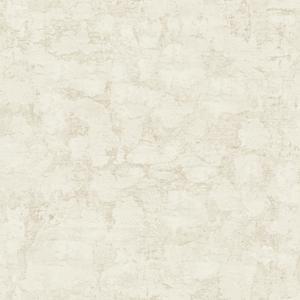Plaster Texture Wallpaper YC3381