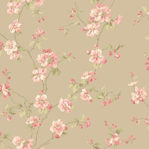 Apple Blossom Wallpaper JC5933