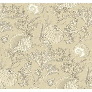 Coral Shells Wallpaper NY4869