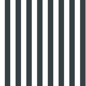 Linen Stripe Wallpaper BT2959