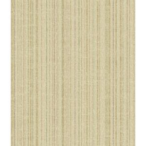 Multicolor Stripe Wallpaper TT6149