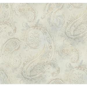 Paisley Wallpaper Y6190101