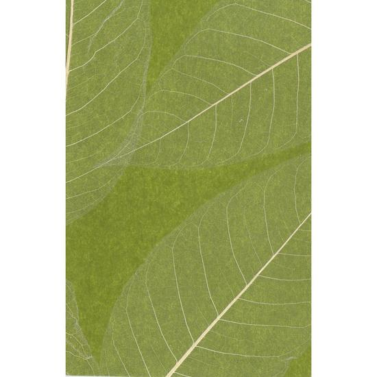 Natural Leaves Wallpaper SE1802