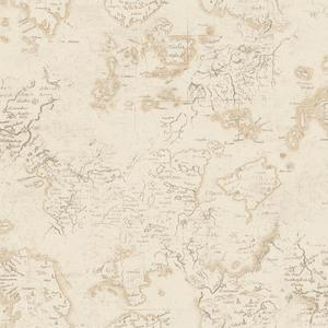 Navigator Wallpaper ML1331