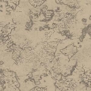 Navigator Wallpaper ML1332