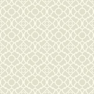 Lovely Lattice Wallpaper WP2495