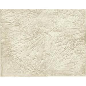 Leaf Scallop Wallpaper Y6180303