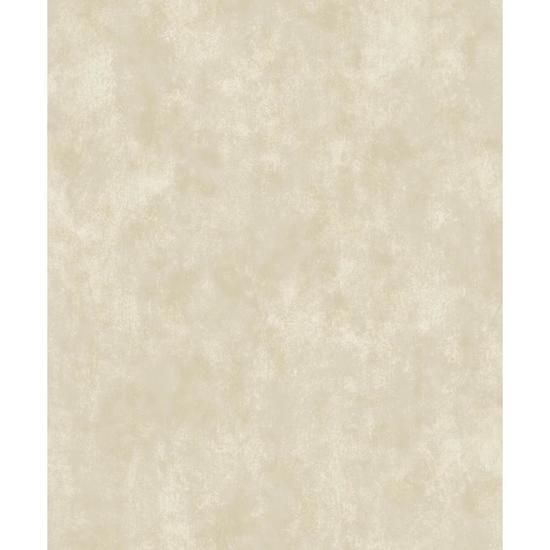 Stucco Texture Wallpaper Y6181002