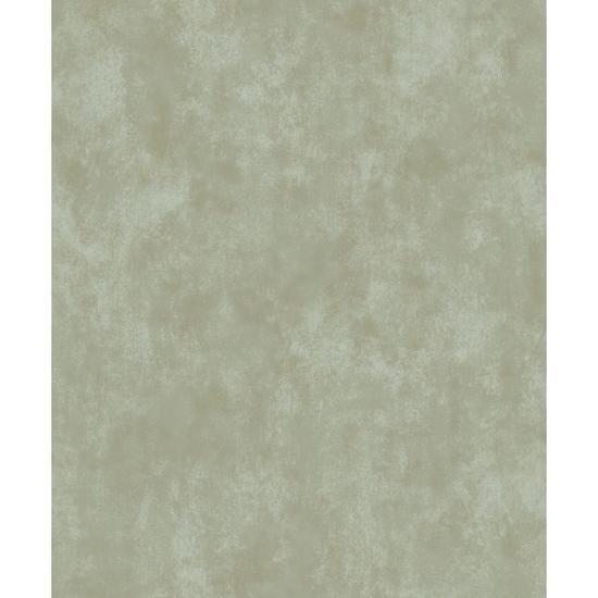 Stucco Texture Wallpaper Y6181007